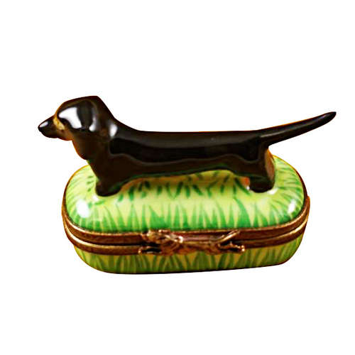Magnifique Black and Tan Dachshund Limoges Box