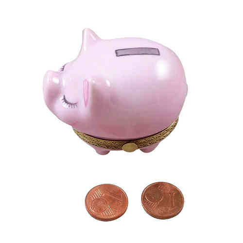 Magnifique Piggy Bank with Slot with Coins Limoges Box