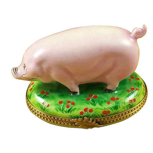 Rochard Pig on Green Base Limoges Box